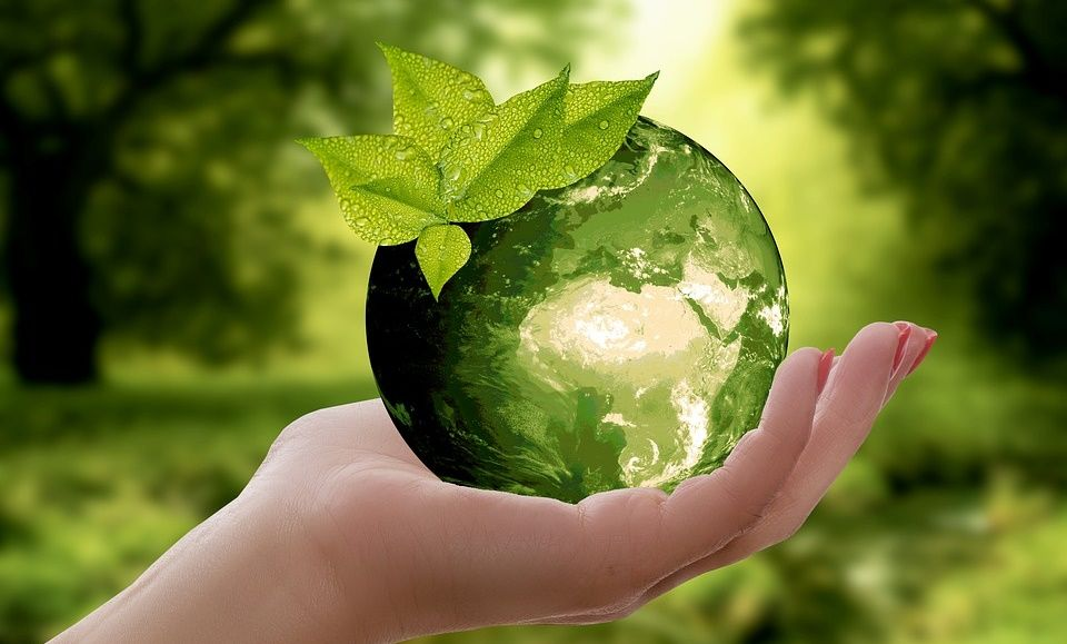 Economia e sustentabilidade ao imprimir relatórios