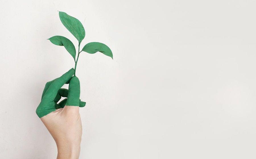 Dicas para praticar a sustentabilidade nas clínicas e consultórios